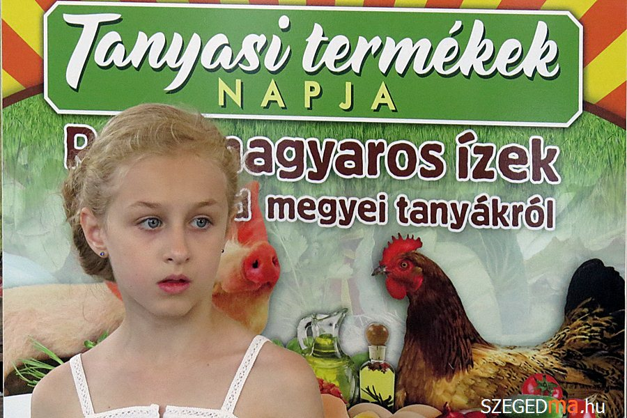mars_ter_tanyasi_termekek03_gs