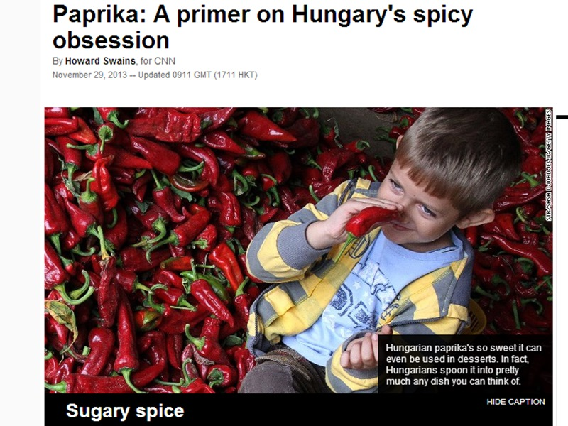 cnn_paprika