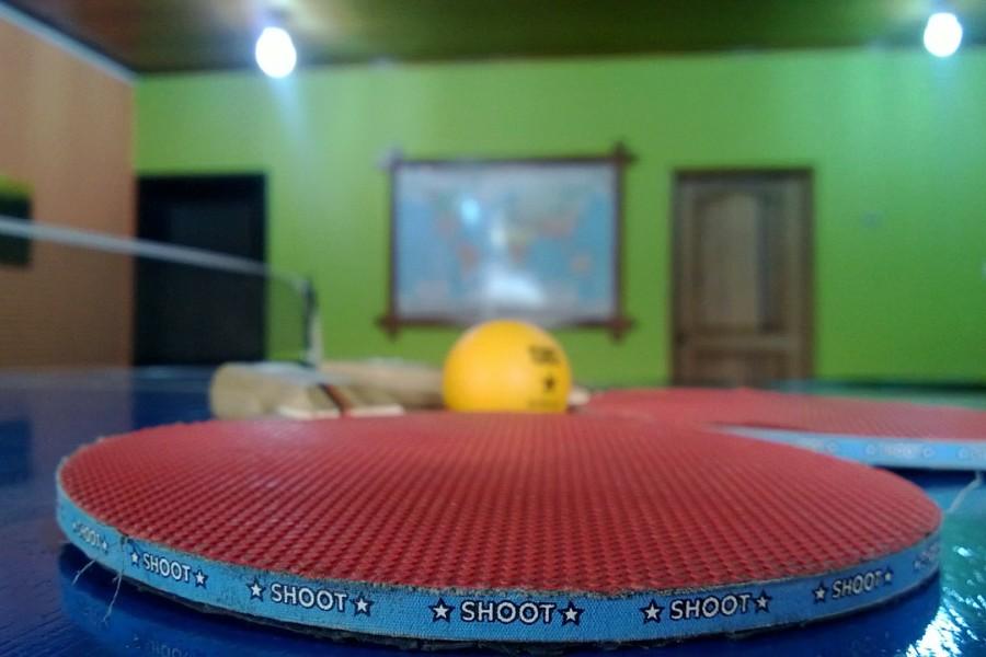 asztalitenisz_pingpong