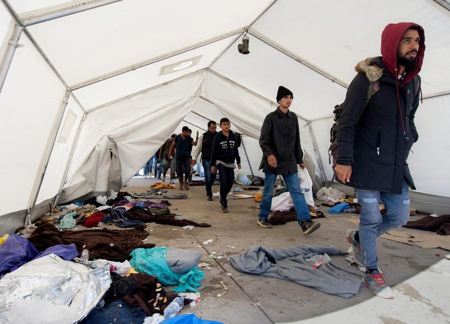 Illegális bevándorlás - Nickelsdorf
