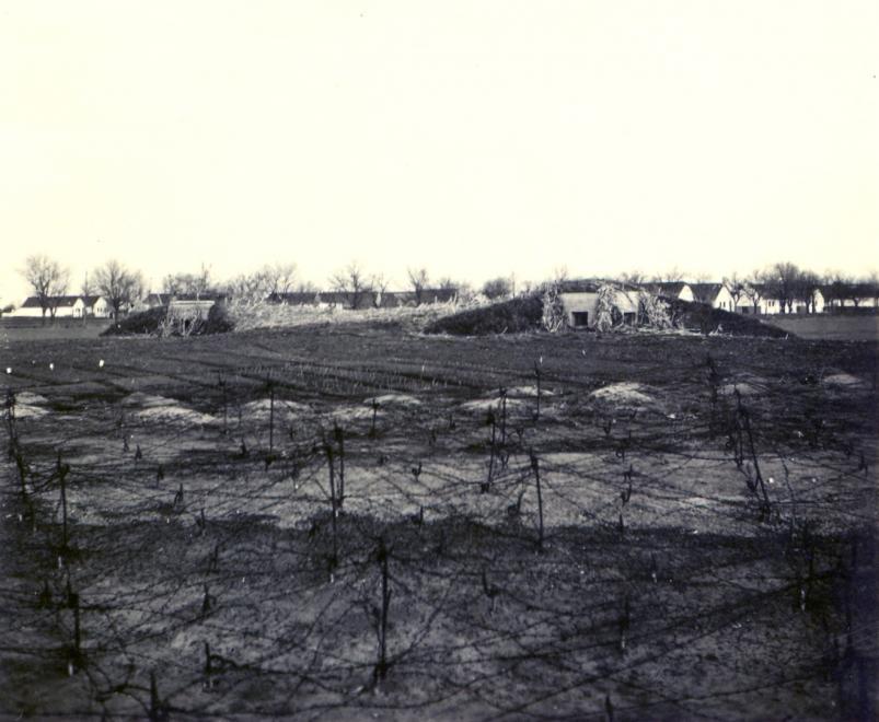 delvidek_bevonulas_erodov_1941