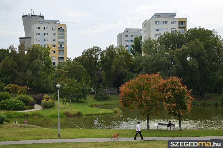 SZS20160817_kacsak_a_zapor_toban_001