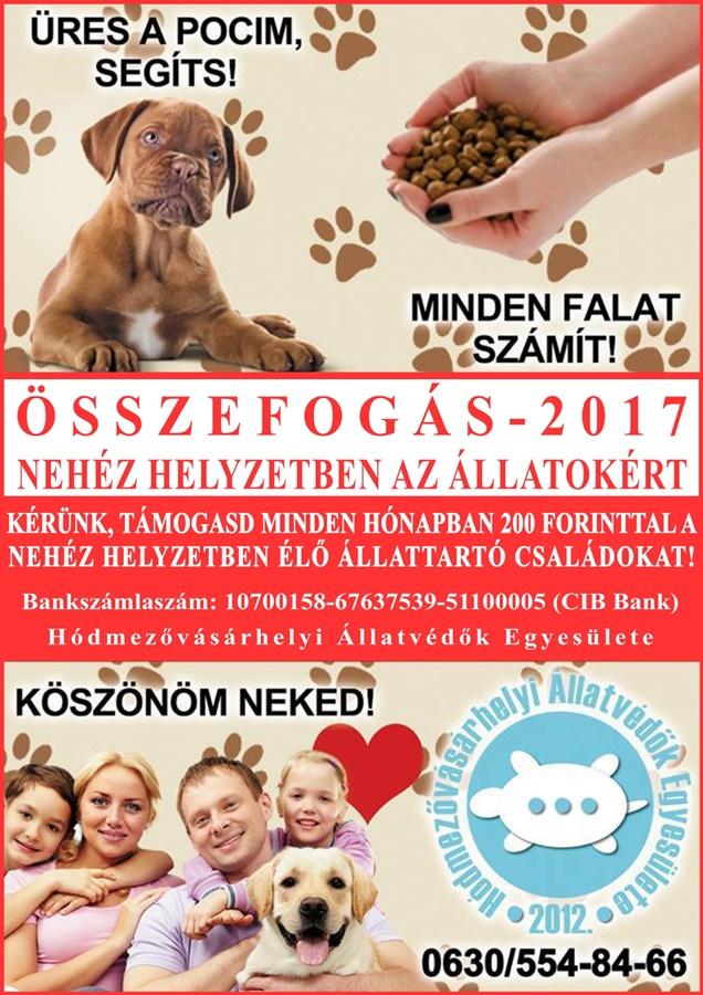 osszefogas_2017