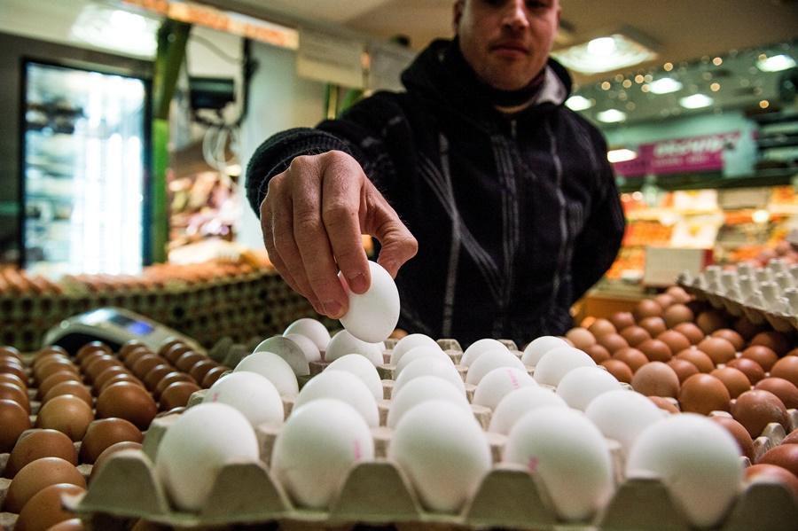 Csökkent a baromfihús, a tojás és a friss tej áfája