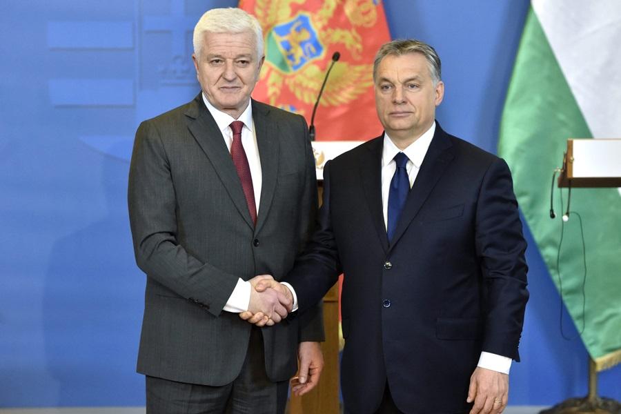 MARKOVIC, Dusko; Orbán Viktor