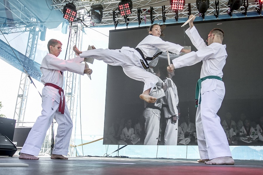 mate_taekwondo