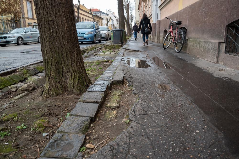 Szétrepedezett járdák keserítik a gyalogosokat Szegeden